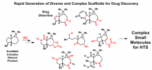Rapid_Generation_of_Diverse_and_Complex_Scaffolds_for_Drug_Discovery